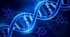 γενετικό τεστ τριχόπτωσης, γονιδιώματος dna