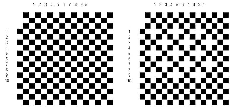 τα μαύρα τετράγωνα είναι τα FUs, τα λευκά είναι το δέρμα ανάμεσά τους